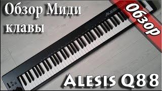 тест и  Обзор миди клавиатуры Alesis Q88