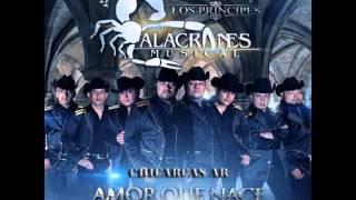 Alacranes Musical - Amor Que Nace (Estreno Duranguense 2015-2016)