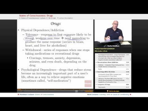 """""""States of Consciousness: Drugs"""" 
