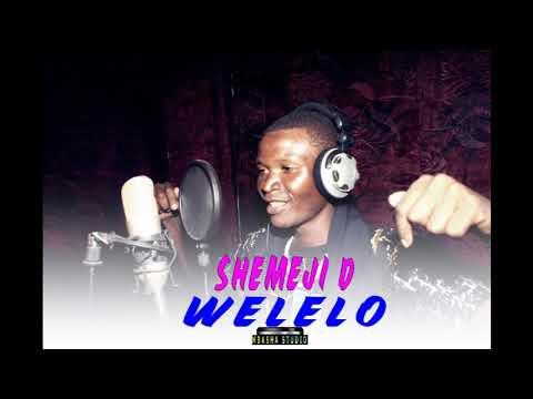 SHEMEJI D WELELO Mbasha Studio