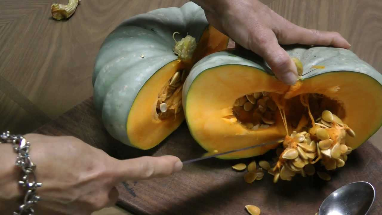 Blue Pumpkin Jarrahdale From Seed To Table YouTube