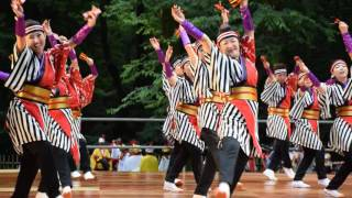 Video Meiji Jingu (Shrine) Traditional Japanese Folk Dance download MP3, 3GP, MP4, WEBM, AVI, FLV Oktober 2018