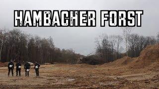 Umwelt, Polizeigewalt, Protest - Hambacher Forst