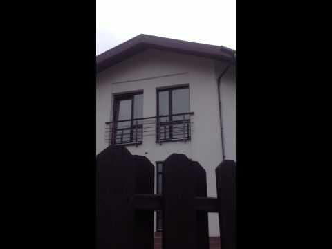 Если птица стучит в окно- К чему это? Народные приметы.