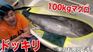 【ドッキリ】自宅のお風呂に100kgのマグロ泳いでるドッキリwww【本物】