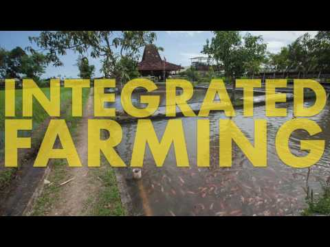 Concept Agriculture Integrated Farming