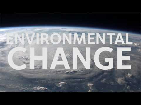 What makes the ECI's MSc and MPhil in Environmental Change and Management unique?