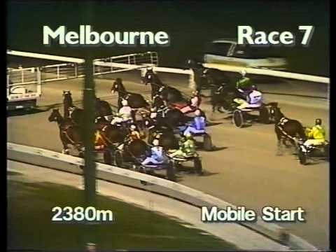 Moonee Valley Trots - 1995 Victoria Derby