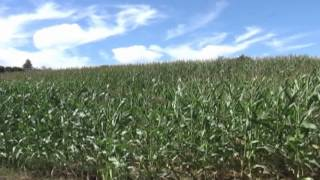 Laport Agricultural Land For Sale Video