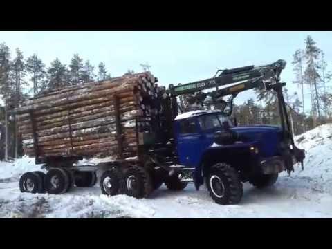 Водитель лесовоза на севере