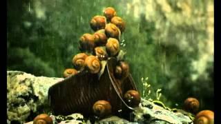Csodabogarak - Sosem esik csak szakad (2.évad 10.rész)