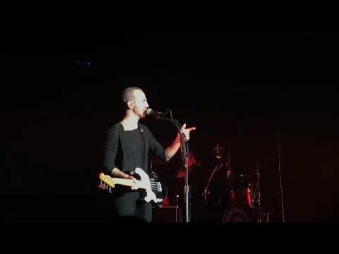 Calogero - 1987 (live) Anova