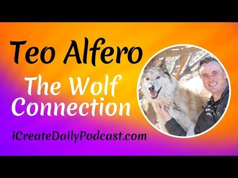 The Wolf Connection With Teo Alfero
