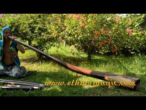 How to buy a didgeridoo