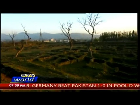 Baixar PTV World Official - Download PTV World Official | DL