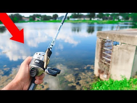 Fishing w/ ZEBCO 33 for GIANT Bass