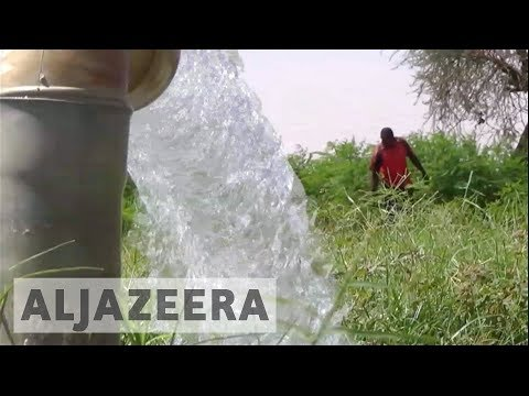 Niger's water crisis hits farmers