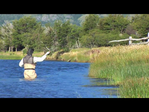 Fly Fishing For Wild Trout At El Saltamontes Lodge In Chile