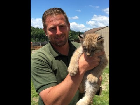 Animal Adventures with Jordan: Canadian Lynx