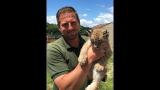 Animal Adventures with Jordan: Canadian Lynx thumbnail