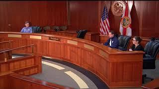 Florida Gov. Ron DeSantis Gives Latest on COVID-19 Response | NBC 6