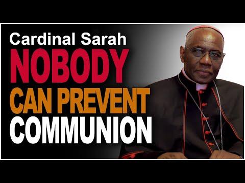 "Cardinal Sarah - ""The faithfull need communion"""