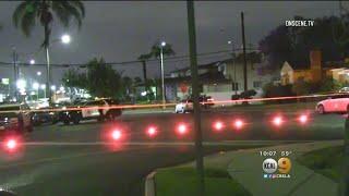 Woman Questioned In Triple Murder