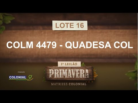 LOTE 16   COLM 4479