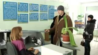 видео Названа самая востребованная профессия в Киеве