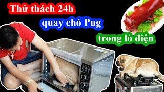 Thử thách 24h quay chó Pug trong lò nướng điện - Bư thành heo sữa quay rồi =))