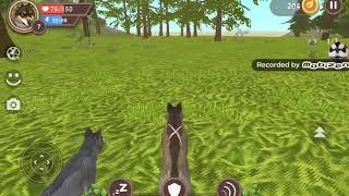 Второе видео симулятор жизнь животных. У меня есть жена.