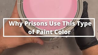 Why Do Prisons and Mental Institutions Use This Type of Paint Color? #shorts