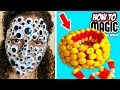 5 HALLOWEEN MAGIC PRANKS!