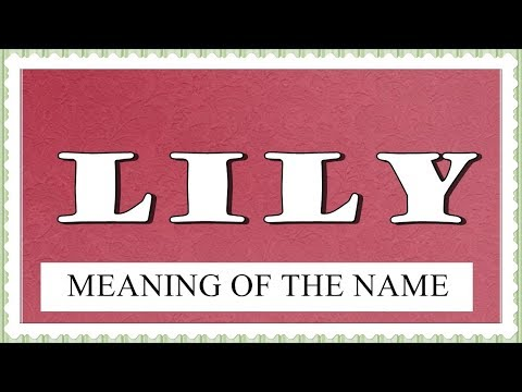 NAME LILY- FUN FACTS AND MEANING OF THE NAME