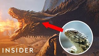 How The 'Game Of Thrones' Dragons Were Designed | Movies Insider
