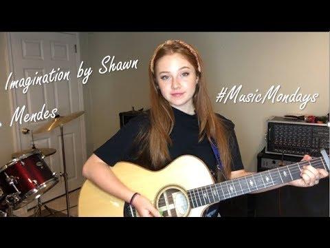 Imagination - Shawn Mendes (Cover By Amanda Nolan)