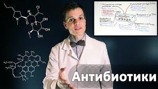 Умный Медик [УМ] - Механизм действия Антибиотиков. Базовое видео по фармакологии.