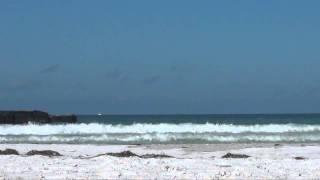 SurfDonDay.mp4