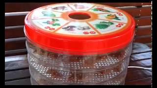 чипсы в сушилке для овощей и фруктов
