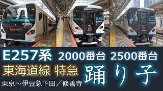 【鉄道ムービー】E257系2000番台+2500番台 特急「踊り子」発着集