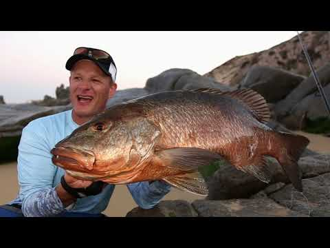 Jansen Cabo Surf Fishing Part 2