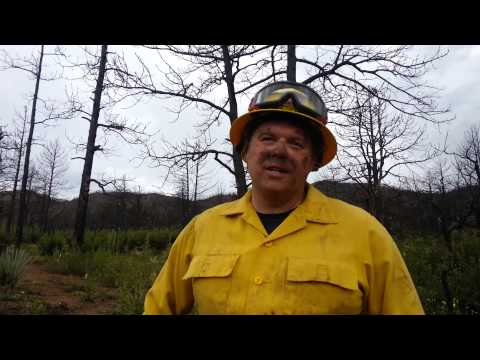 Colorado Springs fire Driver Engineer talks about mitigation work