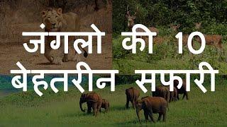 भारतीय जंगलो की 10 बेहतरीन सफारी   Top 10 Amazing Jungle Safari in India   Chotu Nai