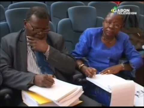 Le Conseil Economique et Social examine le projet de loi de finances 2015