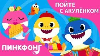 Акулий Бэнд | Пойте с Акулёнком | Пинкфонг Песни для Детей