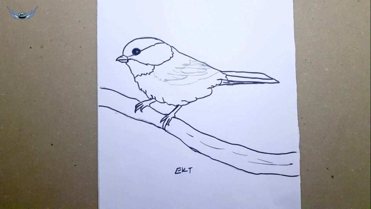 Kolay Ve Basit Serce Cizimi Serce Nasil Cizilir Bird Drawing