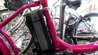 Battery Powered Bicycle in Japan