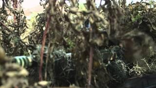 O Atirador: Legado - Trailer