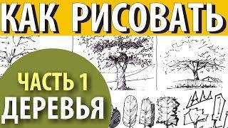 Как рисовать деревья/How to draw trees(Техники рисования деревьев. Вы найдете все необходимые материалы: http://файлообменник.рф/3mjb3fxq9i0d.html *** https://vk...., 2015-03-01T16:27:24.000Z)