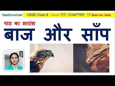 Class 8 Hindi Chapter 17 बाज और साँप